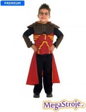 Kostium dziecięcy Quidditch