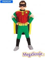 Kostium dziecięcy Robin deluxe